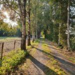 Traumhafter Landsitz in der Nähe der Nordsee – provisionsfrei